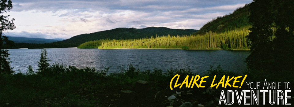 Claire Lake Gallery Postcard