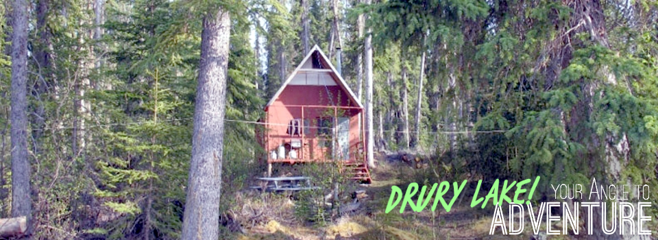Drury Angle Gallery Cabin