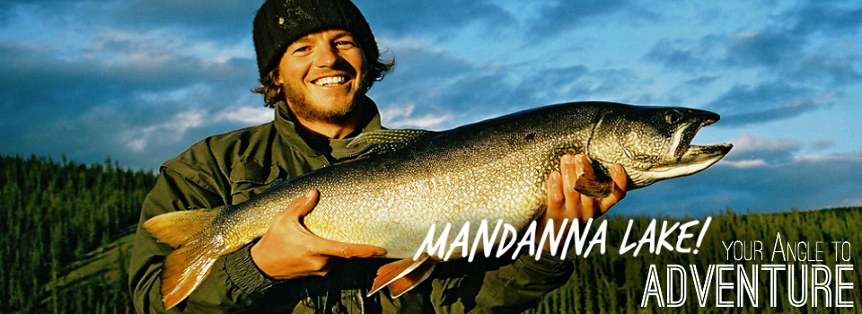 Mandanna Angle  Catch Gallery
