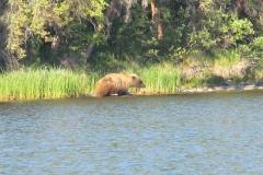 Teehnah Lake Photo Gallery